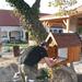 063 Hernádcéce komp bélyegzőhely 2009-ben