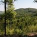 245 Zempléni-hegység a Szpalanyica-völgy közelében