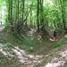 296 Eróziós árkok a Hosszú-domb oldalában