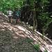 299 Vágáshuta felé a Hosszú-patak völgyében ereszkedünk