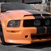 Mustang 5