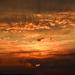 Szeptemberi naplemente