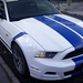 Mustang kék-fehérben