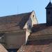 Opočno, Klášterní kostel Narození Páně, SzG3