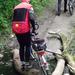 A Csodás Bakony 2012 06 02 083