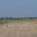 051-Nagyszéksós-tó