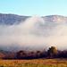 Reggeli köd-1