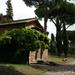 Mediterrán (Via Appia)