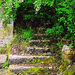 Vadregényes lépcső