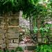 Zöldellő kapu