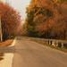 Tisza-parti ősszel