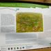 Üveges út avatása 2012.10.05. 120