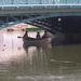 híd alatti kikapcsolódás