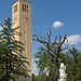 Egyetem templom