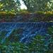 vízesés és fügefa