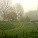novemberi szép ződ gyep a Rákos patak partján