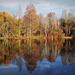 Késő őszi színek