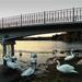 A híd alatt