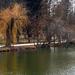 A tó sarka