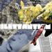 Album - is_M 2010-2011
