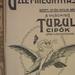 RakocziUt14-TurulCipo-1913Szeptember-AzEst