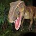 Gyűjtemény - Őslények, dinoszauruszok