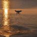 Drón a naplementében