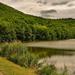 Hattyú tó vizén