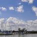 Június a kikötőbenBB
