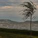 Fúj a szél