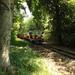 Úttörő vasút Normafa