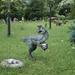 Dino parkban