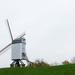Brugge - szélmalom (P1280783)