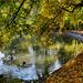 Az őszi tóparton