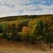 Őszi színek a Bükkből