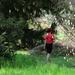Tavasz az arborétumban 118