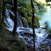 Vízesés fákkal