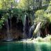 Erdő és vízesés