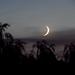 Hold fázisai, dagadó Hold + erős szél .Első Hold-fotóm