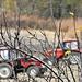 Traktorok munkában
