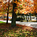 Erzsébet kert, Sopron, ősz.Felújítási munkák a háttérben.