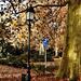 Utcai lámpa és az ősz