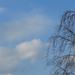 Tavaszi égbolt