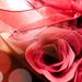 Rózsa szappanok dobozban
