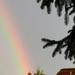Eső után / Szivárvány részlet