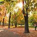 Őszi séta Park