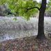 Borús esős Lővér Kemping Ősz