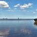 Fertő tó Nyár