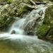 Túra Erdő Vízesés