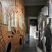 Balaton Kiállítás Nyár